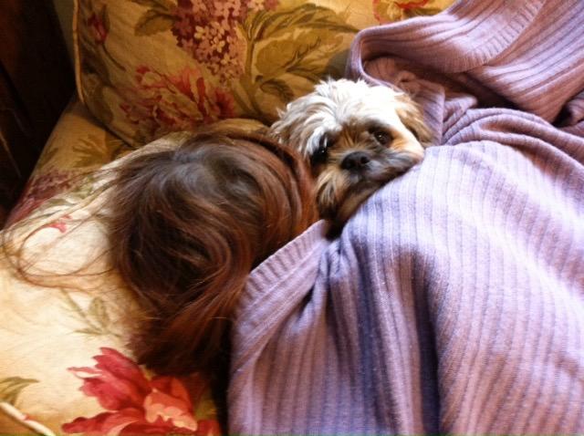 popo snuggle